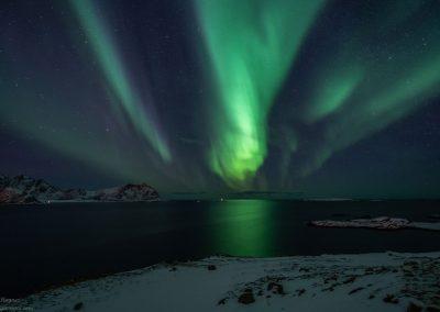 Nordlyset sett fra Kroknesbrekka - Foto: Benny Høynes