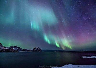 Fra Kroknesbrekka - Skogsøya i bakgrunnen til venstre  - Foto: Benny Høynes